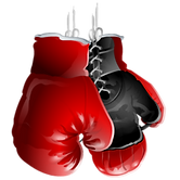 Boxing Traing Delhi