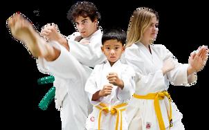 Karate Training Center & Classes in Janakpuri,Delhi | India