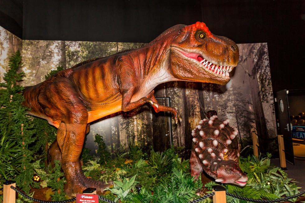 Jurassic Giants-1039.jpg