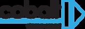 Damp_Smart_Logo.png