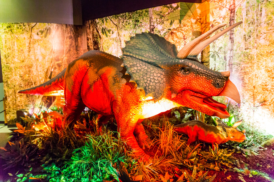 Jurassic Giants-1098.jpg