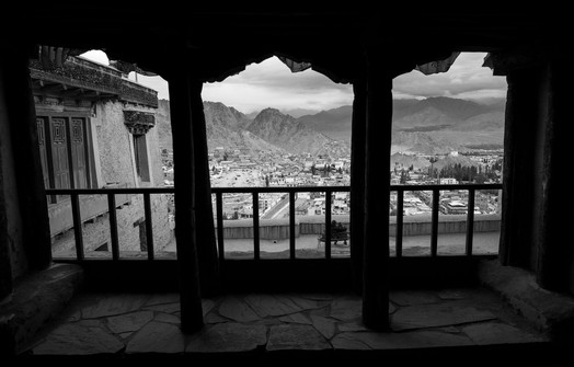 view from Leh Castle