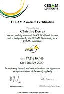 Certificate CESAMES Associate JPG.jpg