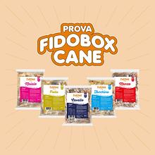 Fidobox Cane