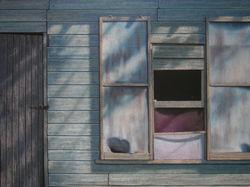 Screens, 2006