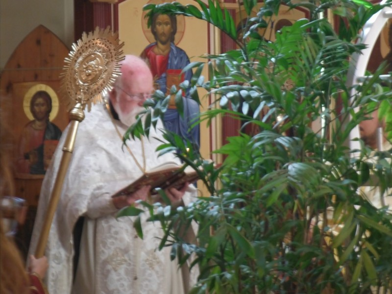 Father Philip reads the Gospel
