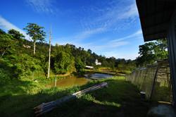 Views at the farm