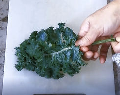 Kale%20prep%20picture_edited.jpg