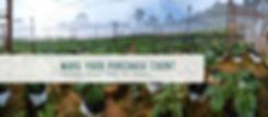 Farm Website banner 1.png