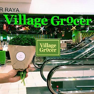 Village grocer.jpg