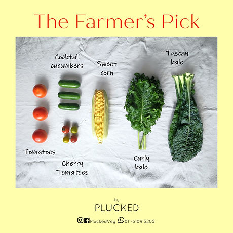 The Farmer's Pick.jpg