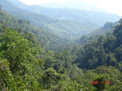 San Juaquin 022