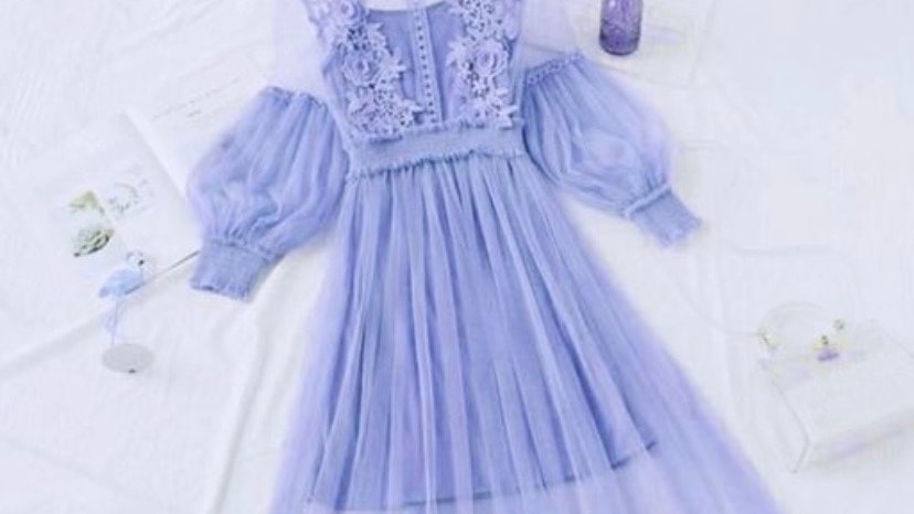Embroidered Mesh Flare Puff-Sleeve Dress with Lining