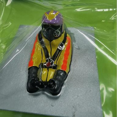 JDS-3017P Painted Nostalgia Driver #06