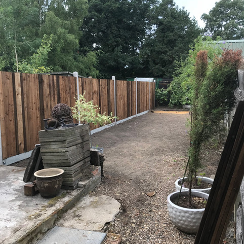 Feather Edge with Concrete posts