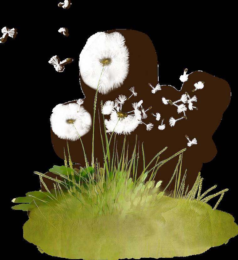 kisspng-dandelion-clip-art-dandelion-5a8