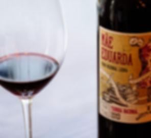 Wine bar  & tapas at Faro and Almancil
