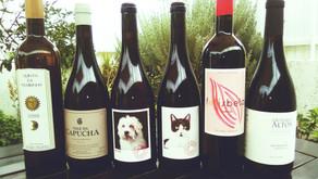 Vinhos sem Sulfitos