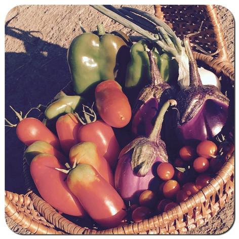 verdura cesto.jpg