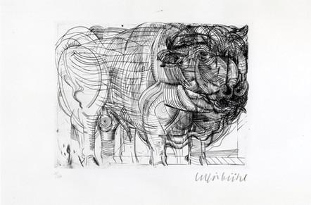 Bernhard Luginbühl, STIER 1960/70