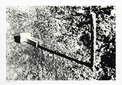 Gianfredo Camesi, Mouvement, 1970/71