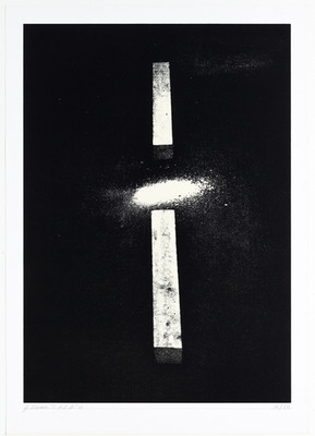 Gianfredo Camesi, Objekt - Action - Resultat - Devenir 1969/70/71