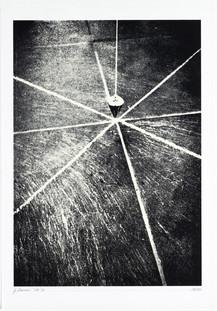 Gianfredo Camesi, Point Vital, 1969/71
