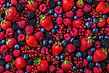 selection-of-berries-from-above.jpg