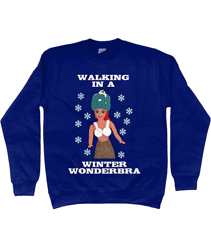Walking In A Winter Wonderbra, Rude, Funny Xmas Jumper!