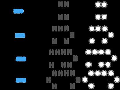 75 alkenes-01.png