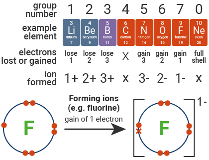 Forming Ions (e.g. fluoride)