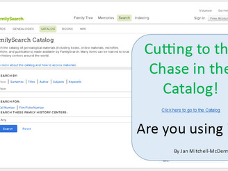 Cutting to the Chase in the Catalog