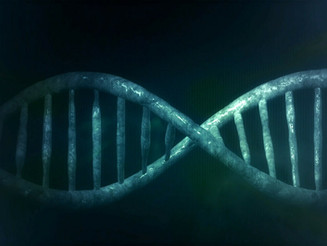 Genealogy! Just Ask! Has DNA Now