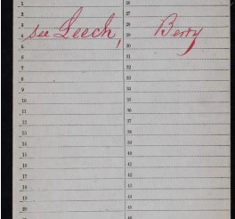 US Civil War Service Record of Berry Leech from 135th Colored Infantry