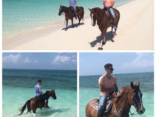 TRAINER TRAVELS: Horseback Riding in Turks & Caicos