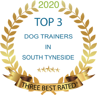 South Tynesides Best dog trainer