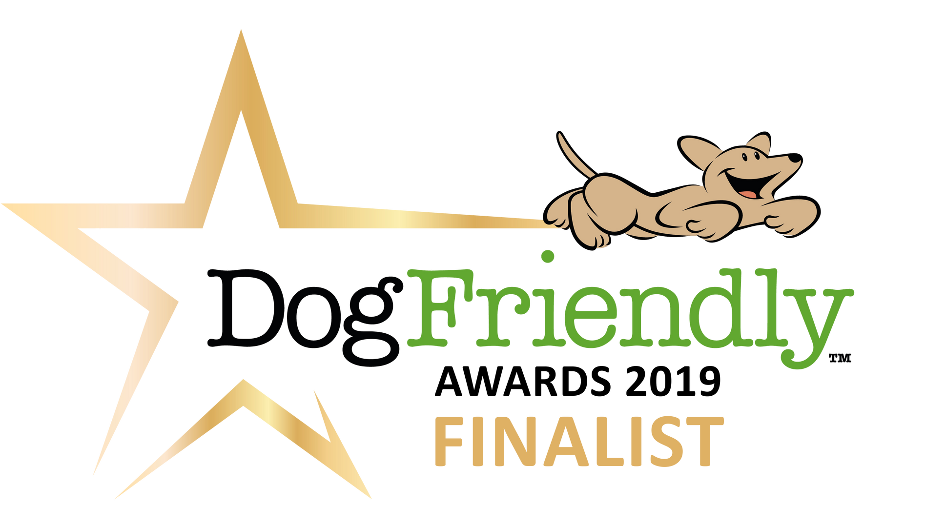 2019-DF_Awards_finalist.PNG