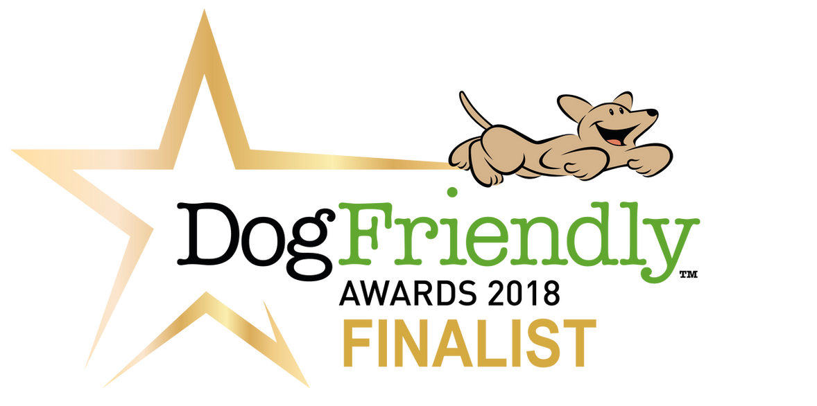 DF_Awards_2018 FINALIST.png