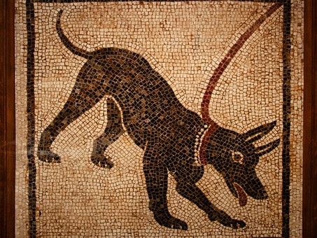 Who was the first dog trainer?