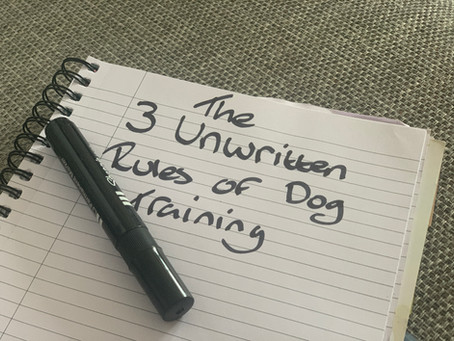 The 3 unwritten rules of dog training