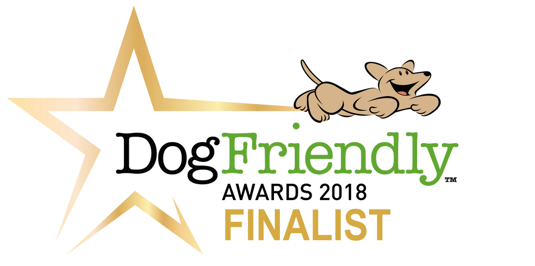 DF_Awards_2018 FINALIST.png