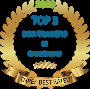 Gateshead best dog trainer