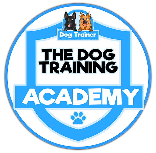 The Dog Training Academy
