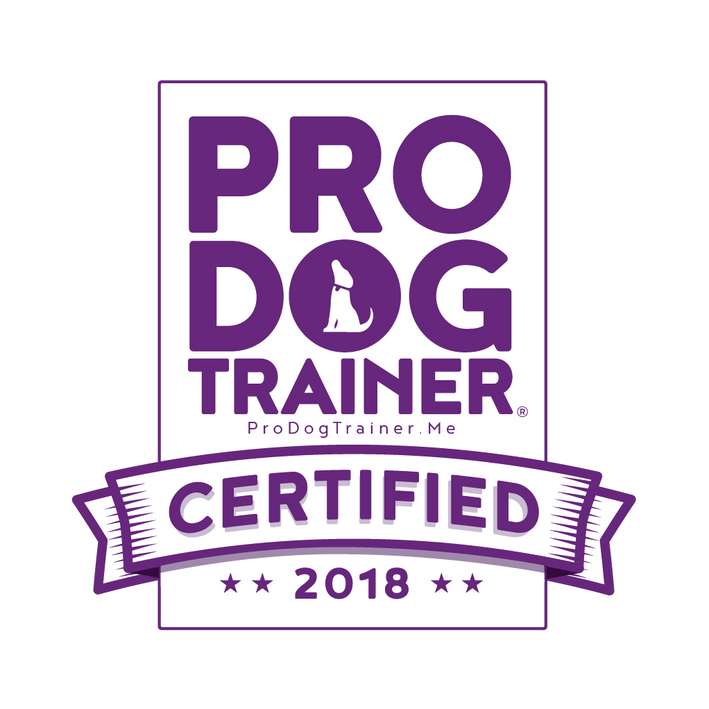 Qualified Dog trainer in south shields