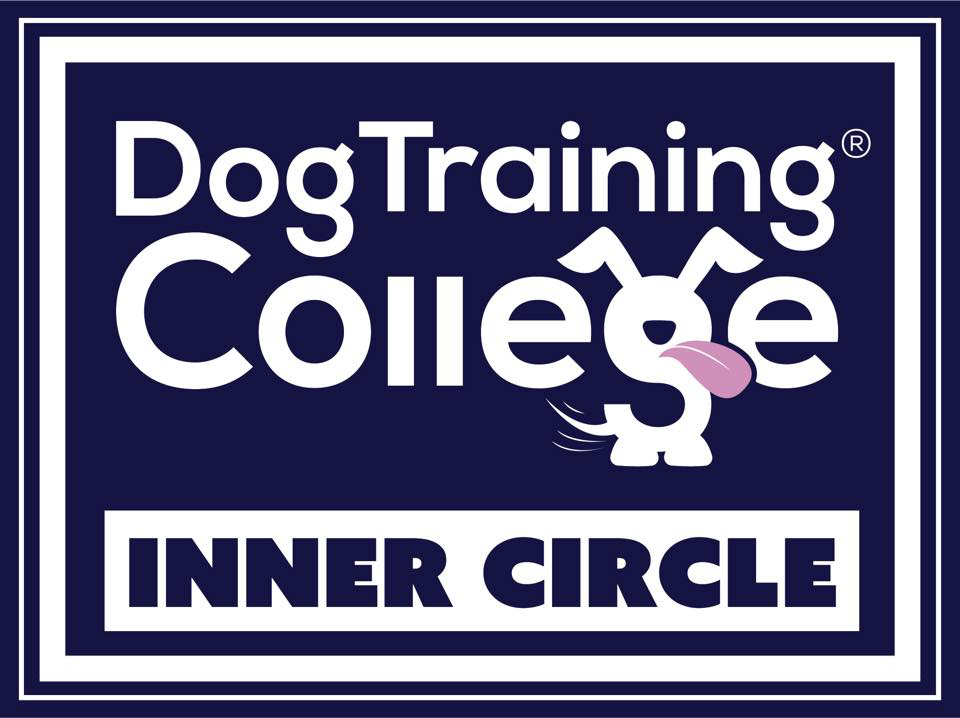 DTC Inner circle dog trainer