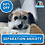 Thumbnail: How to Resolve Separation Anxiety In Dogs - Step by Step Program