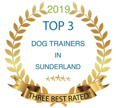 Sunderlands best dog trainer
