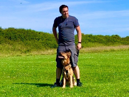 What makes a great dog trainer?
