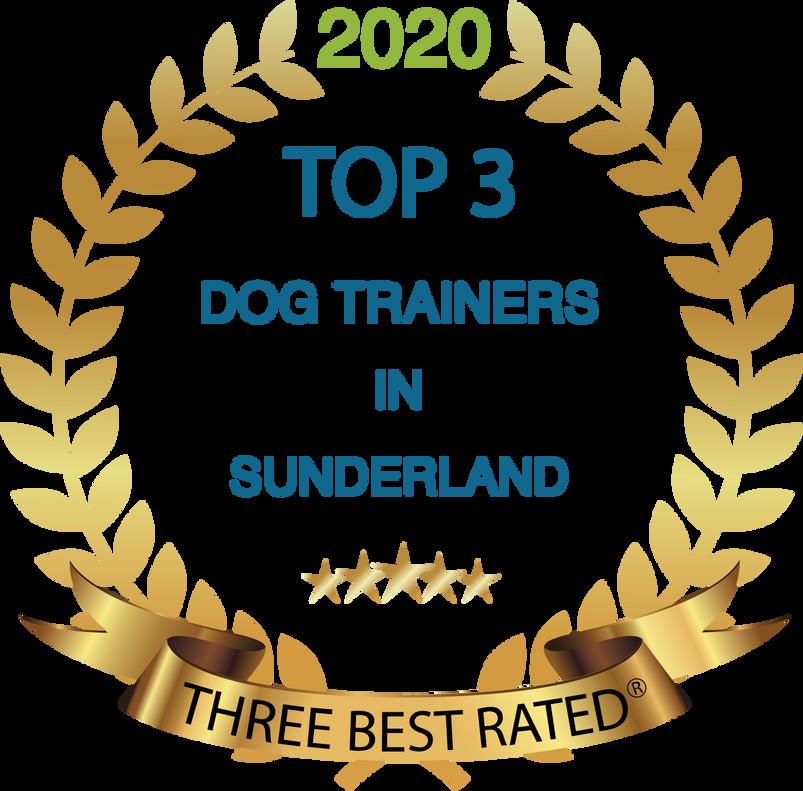Sunderland best dog trainer