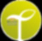 Традо Макс | Натуральные аюрведические препараты Традо, восстановительные травяные комплексы из Индии от Bliss Ayurveda